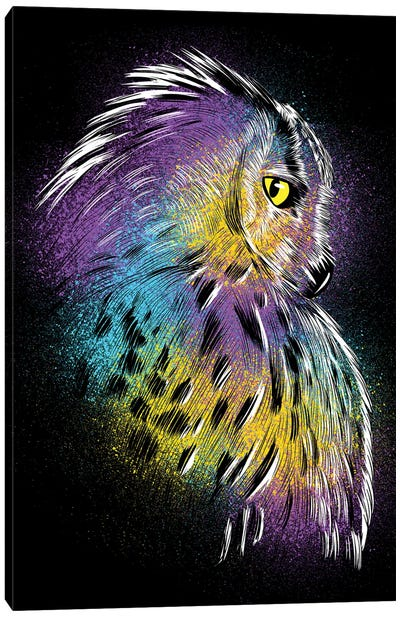 Sketch Owl Colorful Canvas Art Print