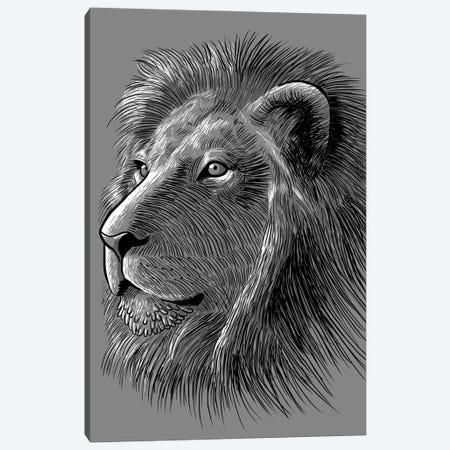 Sketch Lion Canvas Print #APZ240} by Alberto Perez Art Print