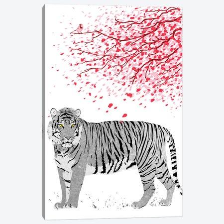 Cherrytree Tiger Canvas Print #APZ243} by Alberto Perez Art Print