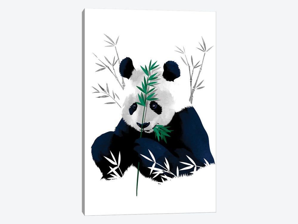 Bambo Panda by Alberto Perez 1-piece Canvas Art Print