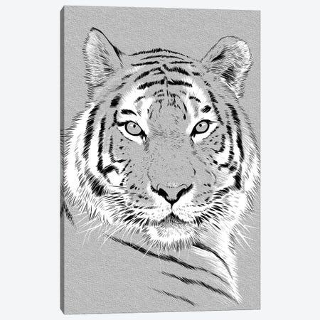 Tiger Sketch Canvas Print #APZ343} by Alberto Perez Canvas Art