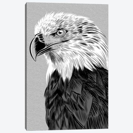 Eagle Sketch Canvas Print #APZ344} by Alberto Perez Canvas Art Print