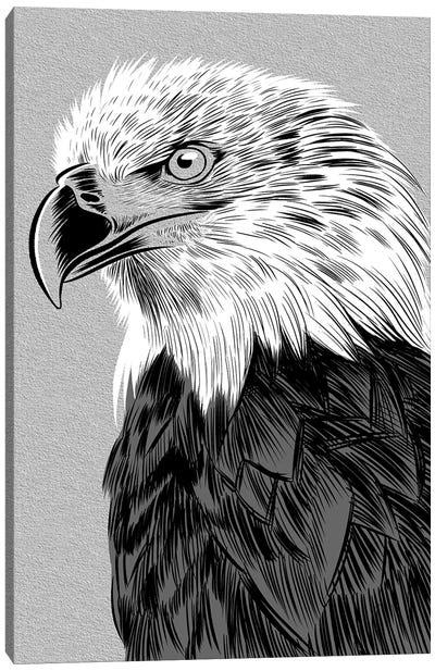 Eagle Sketch Canvas Art Print
