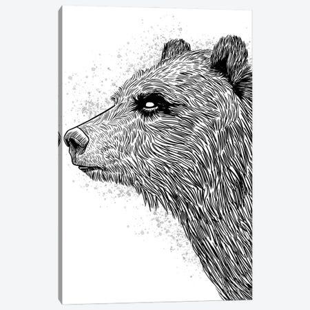 Sketch Bear Brizzly Canvas Print #APZ356} by Alberto Perez Canvas Wall Art