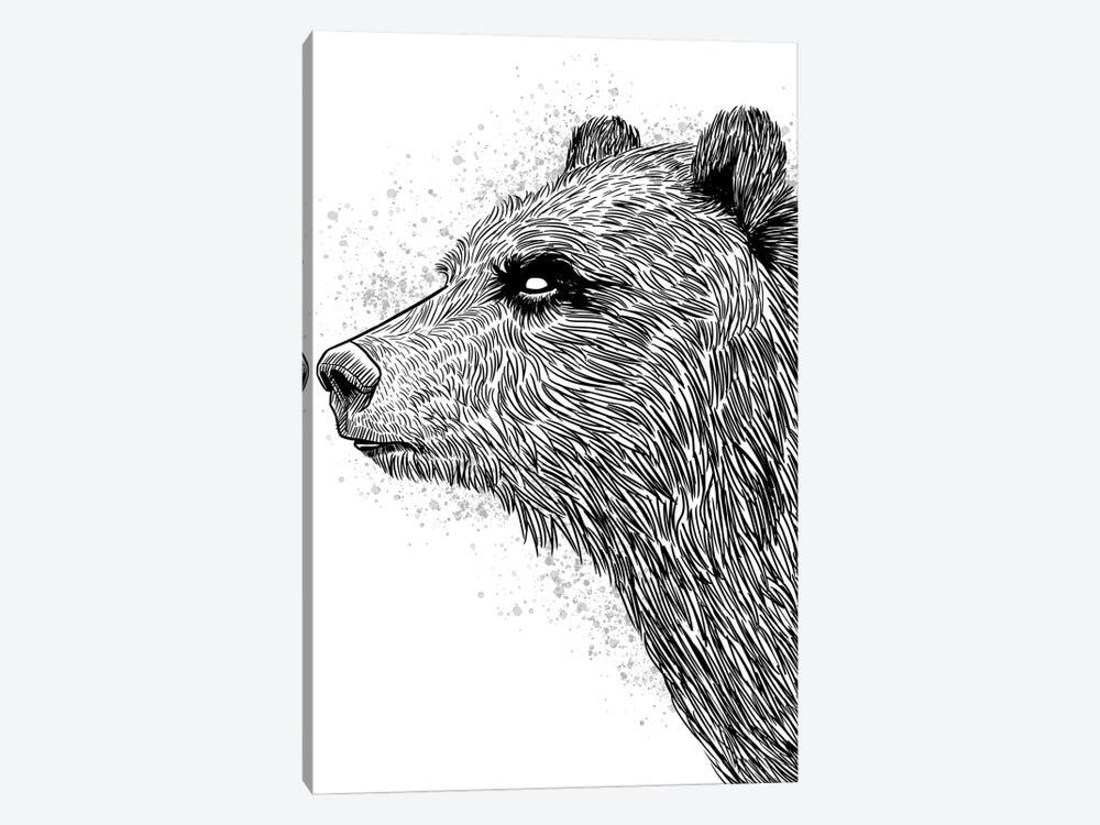 Sketch Bear Brizzly by Alberto Perez 1-piece Canvas Wall Art