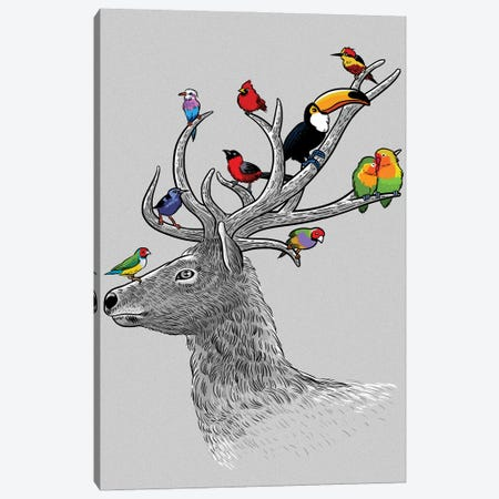 Deer Tropical Birds Canvas Print #APZ45} by Alberto Perez Canvas Print