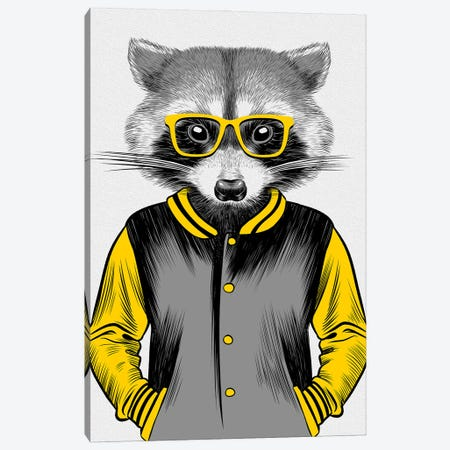 University Raccoon 3-Piece Canvas #APZ81} by Alberto Perez Canvas Artwork