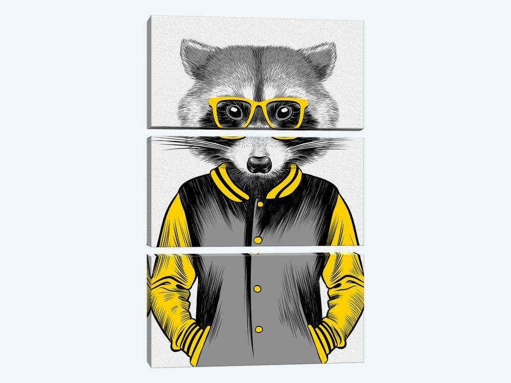 University Raccoon by Alberto Perez 3-piece Canvas Artwork