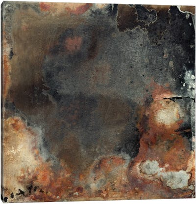 Pangea I Canvas Art Print