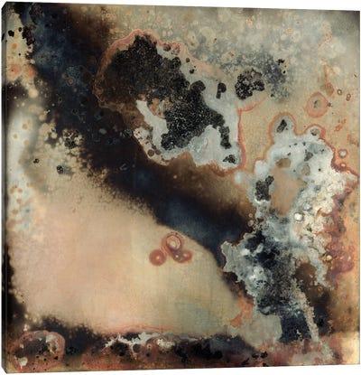 Pangea III Canvas Art Print