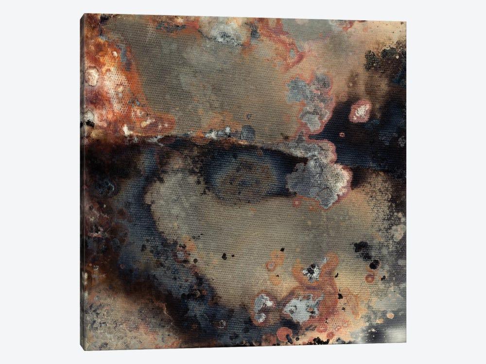 Pangea IV by Kate Archie 1-piece Canvas Artwork
