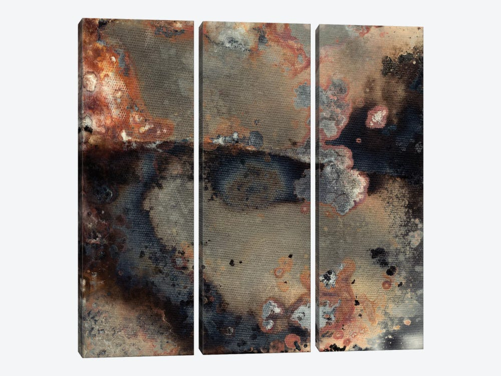 Pangea IV by Kate Archie 3-piece Canvas Wall Art