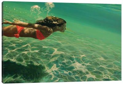 Oxygen Canvas Art Print