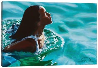 Translucent Canvas Art Print