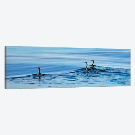 Trois Cormorans Canvas Print #ARE58} by Antoine Renault Canvas Art Print