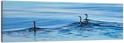 Trois Cormorans Canvas Art Print