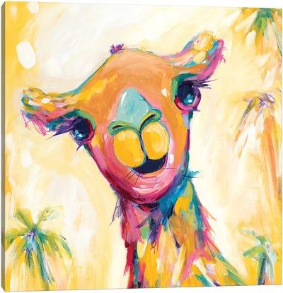 Camel Babe Canvas Art Print