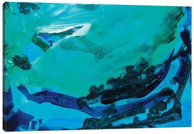Caught The Wave Canvas Art Print