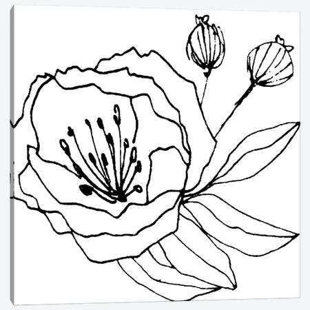 Gera Canvas Print #ARM100} by Art Mirano Canvas Art