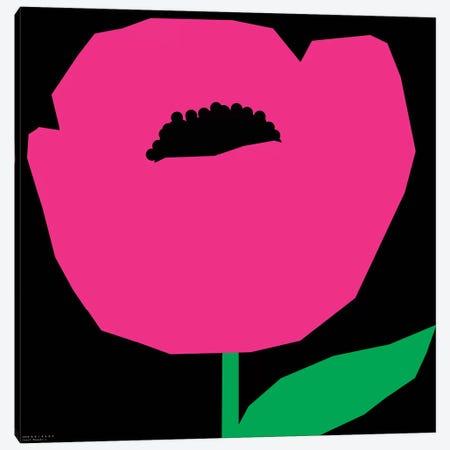 Pink Poppy Canvas Print #ARM179} by Art Mirano Canvas Print