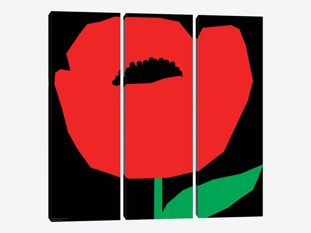 Red Poppy by Art Mirano 3-piece Canvas Art Print