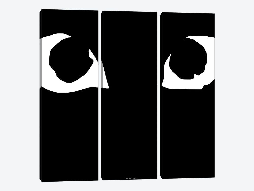 Black Eyes by Art Mirano 3-piece Canvas Art