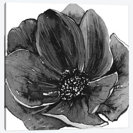 Ellie Black & White Canvas Print #ARM359} by Art Mirano Canvas Print
