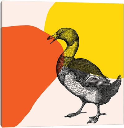 Bird On Yellow Canvas Art Print