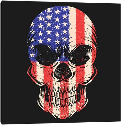 Skull USA Canvas Art Print
