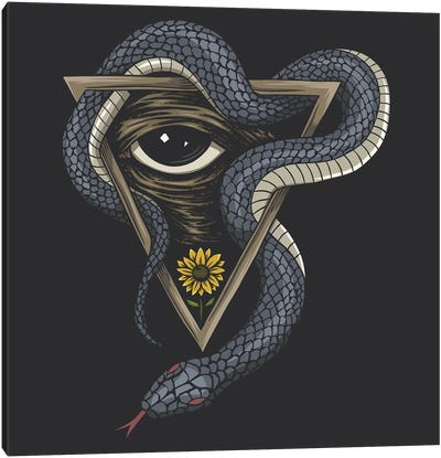Snake On A Triangle Canvas Art Print