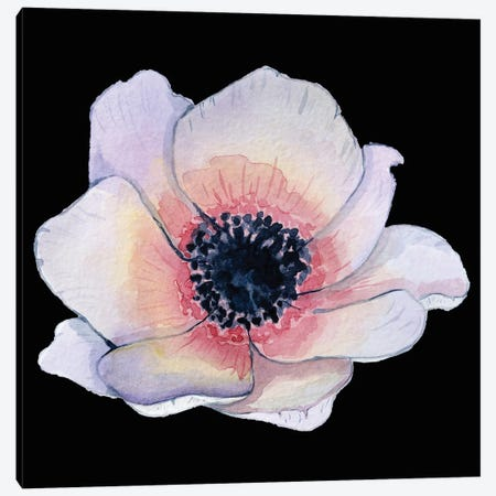 Flower On The Black Pink Canvas Print #ARM607} by Art Mirano Canvas Artwork