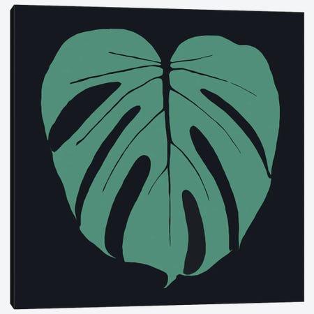 Monstera Plants Illustration Canvas Print #ARM615} by Art Mirano Canvas Art Print