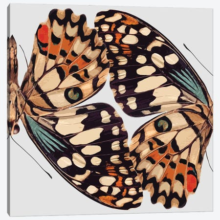 Butterfly Mirror Canvas Print #ARM685} by Art Mirano Canvas Wall Art
