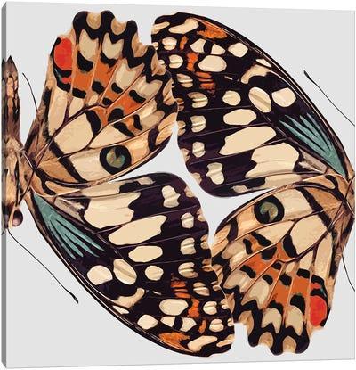 Butterfly Mirror Canvas Art Print
