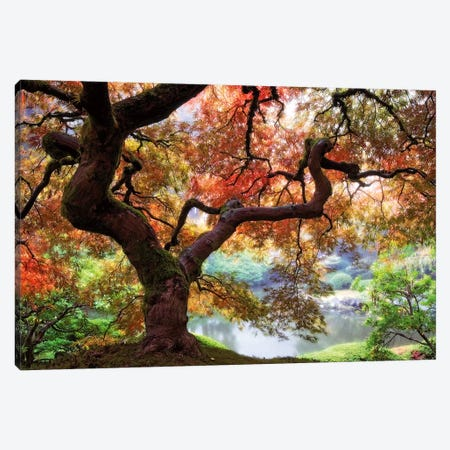 Dreaming of October Canvas Print #ARN2} by Aaron Reed Canvas Art
