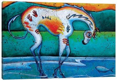 Painted Appaloosa Canvas Art Print