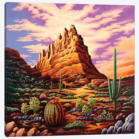 Superstition Mountains Canvas Print #ARU51} by Andy Russell Canvas Print