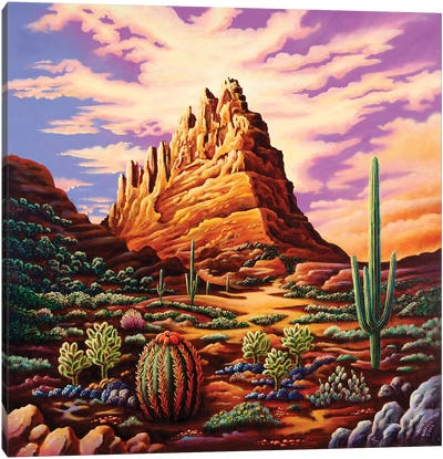 Superstition Mountains Canvas Art Print
