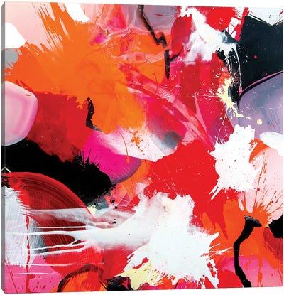 Dywial Canvas Art Print