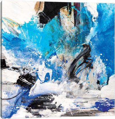 Angidion Canvas Art Print