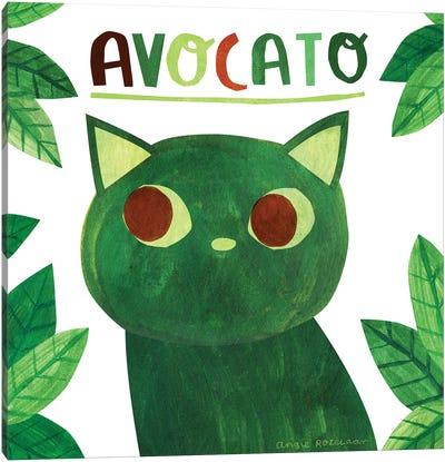 Avocato Canvas Art Print