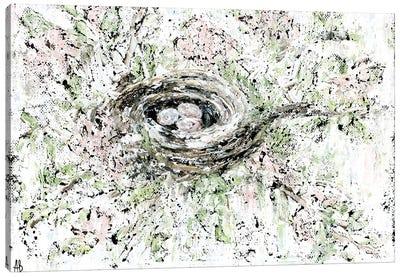 Spring Bird Nest Canvas Art Print