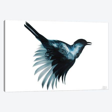 Eidolon Canvas Print #ASD10} by Adam S. Doyle Canvas Print