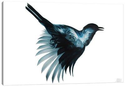 Eidolon Canvas Art Print