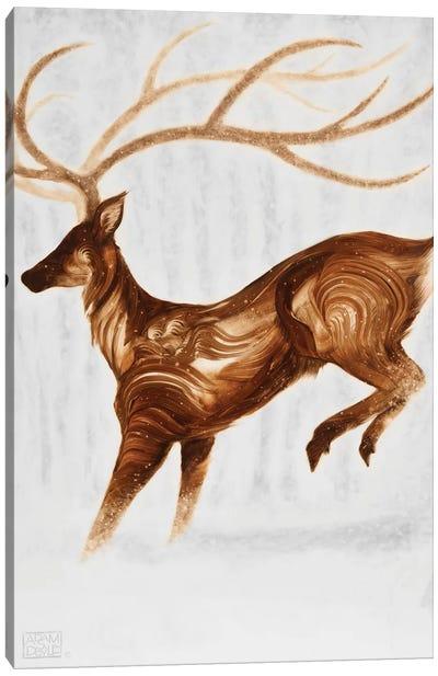Pareidolia Canvas Art Print