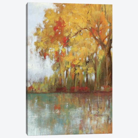 Forest Reflection I Canvas Print #ASJ102} by Asia Jensen Art Print