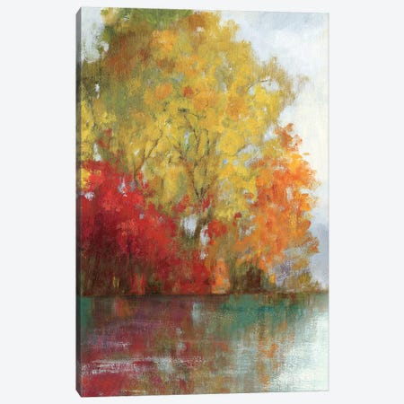 Forest Reflection II Canvas Print #ASJ103} by Asia Jensen Canvas Print