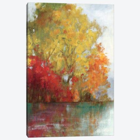 Forest Reflection II Canvas Print #ASJ103} by Asia Jensen Canvas Print