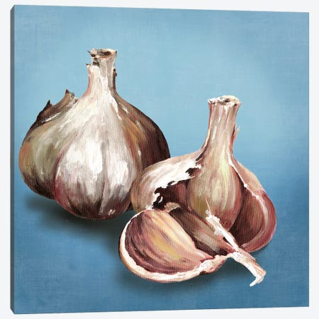 Garlic Canvas Print #ASJ107} by Asia Jensen Canvas Artwork