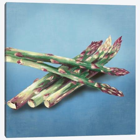 Asparagus Canvas Print #ASJ10} by Asia Jensen Art Print
